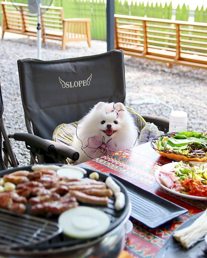 마치 여행에 온 기분! '캠핑 컨셉 식당' BEST 3